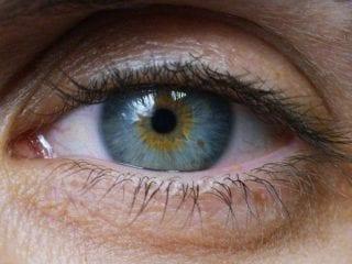 Ein Auge mit blau-grau-gelb Farben