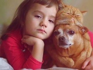 Ein Mädchen mit Haustier Hund und Katze