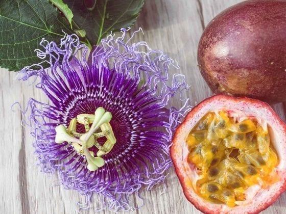 Eine Passionsblume neben einer halben Maracujafrucht