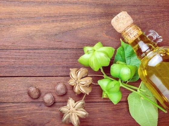 Sacha-Inchi-Nüsse, die Pflanze und Sacha-Inchi-Öl in einer Glasflasche auf einer Holzunterlage