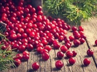 Lose, feuerrote Cranberrys