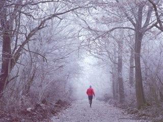 Ein Läufer im Winterwald