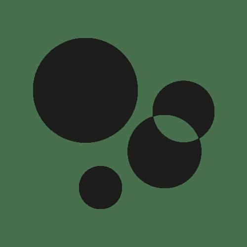 Edelweiss-Blüte in weiß und gelb mit grünen Blättern